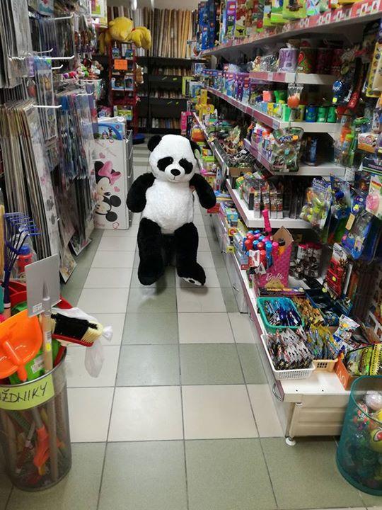 Panda v Pande